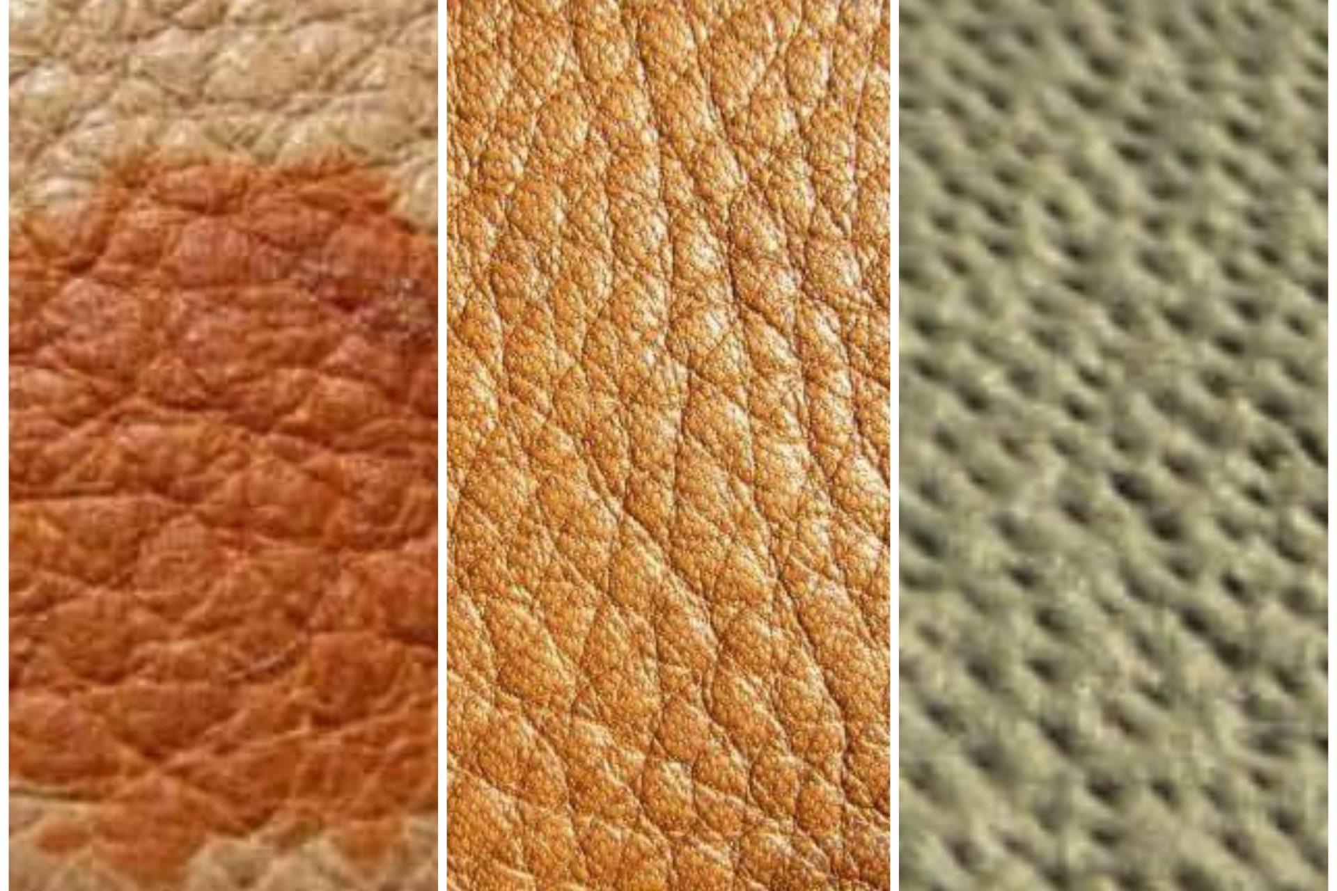 Perbedaan Jenis-Jenis kulit asli